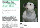 """ Dog Bless You"" The Photography Of Mary Bloom."