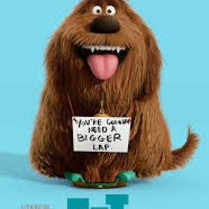 Review: The Secret Life Of Pets 3