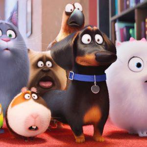 Review: The Secret Life Of Pets 5