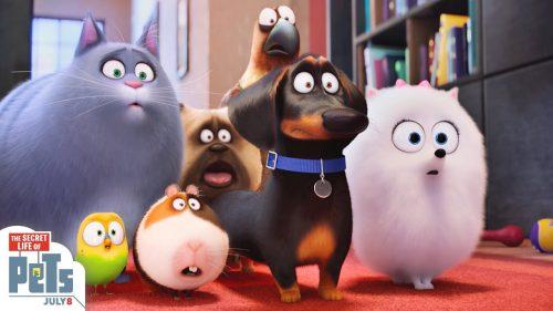 Trailer: The Secret Life Of Pets. 1