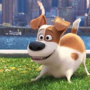 Review: The Secret Life Of Pets 6