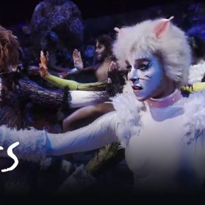 CATS- The Purfect Show For Young Children. 1
