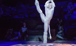 """""""CATS""""- The Purrfect Show For Young Children."""