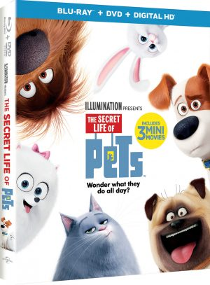 THE SECRET LIFE OF PETS PARTNERS WITH AMTRAK FOR PETS RIDE FREE.